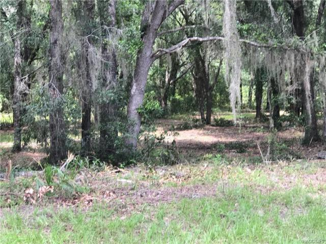 4161 S Kenvera Loop, Inverness, FL 34450 (MLS #777055) :: Plantation Realty Inc.