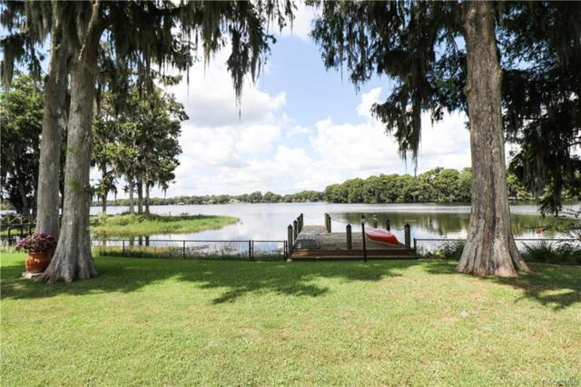6610 S Duval Island Drive, Floral City, FL 34436 (MLS #777056) :: Plantation Realty Inc.