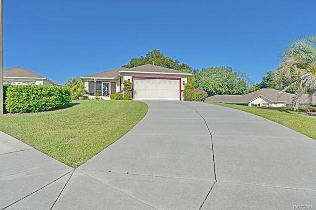 4673 N Lake Vista Trail, Hernando, FL 34442 (MLS #777102) :: Plantation Realty Inc.