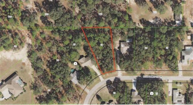 1485 E Saint James Loop, Inverness, FL 34453 (MLS #777107) :: Plantation Realty Inc.