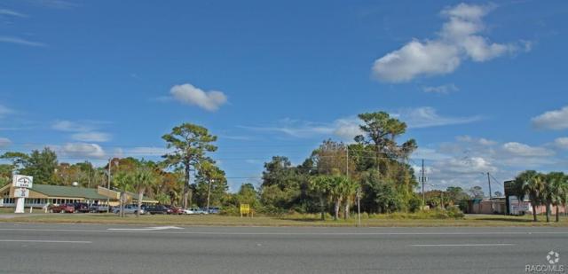 0 SE Hwy 19 Highway, Crystal River, FL 34429 (MLS #777176) :: Plantation Realty Inc.