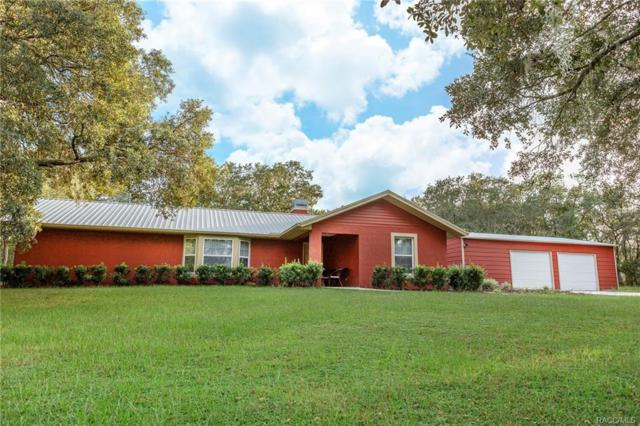 6968 S Auto Cluck Point, Lecanto, FL 34461 (MLS #777202) :: Plantation Realty Inc.