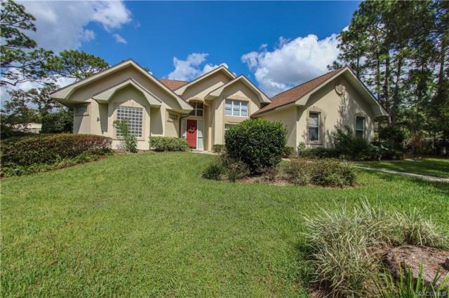 5530 N Elkcam Boulevard, Beverly Hills, FL 34465 (MLS #777223) :: Plantation Realty Inc.