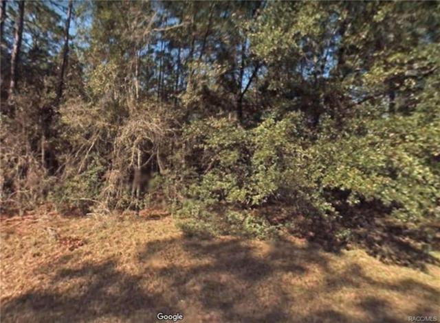 9204 N Lily Drive, Citrus Springs, FL 34434 (MLS #777224) :: Pristine Properties
