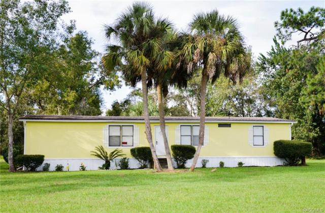 6235 W Grant Street, Homosassa, FL 34448 (MLS #777255) :: Plantation Realty Inc.