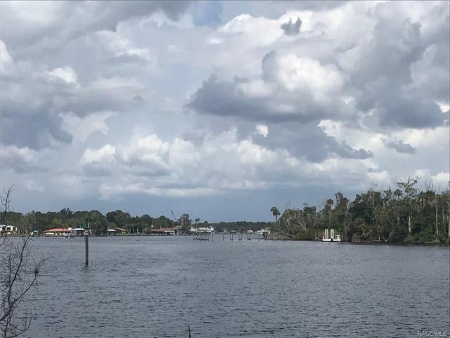 10863 W Xanadu Path, Homosassa, FL 34448 (MLS #777295) :: Plantation Realty Inc.