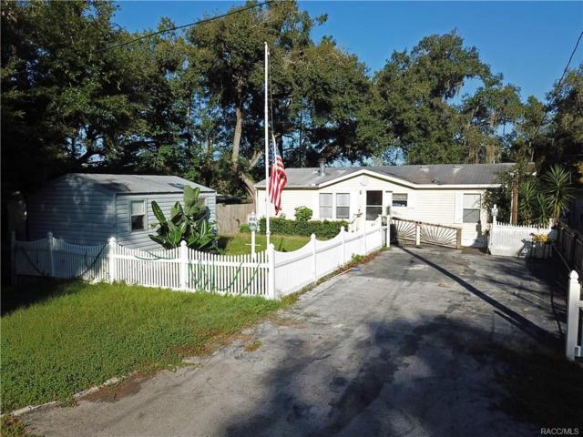 10525 E Turtle Lane, Floral City, FL 34436 (MLS #777305) :: Plantation Realty Inc.