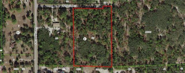 3042 W Falcon Court, Lecanto, FL 34461 (MLS #777319) :: Plantation Realty Inc.