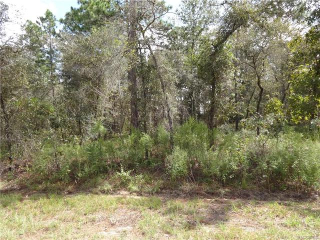 0 NW Buena Vista Boulevard, Dunnellon, FL 34433 (MLS #777323) :: Plantation Realty Inc.