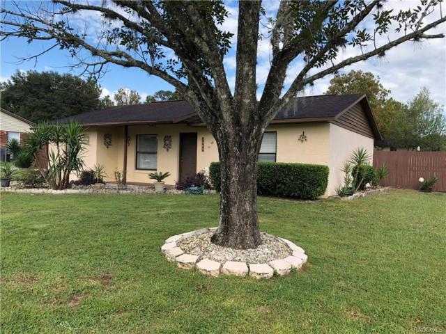 3883 S Kindness Terrace, Homosassa, FL 34448 (MLS #777346) :: Plantation Realty Inc.