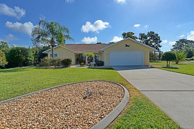 1051 N Hambletonian Drive, Hernando, FL 34442 (MLS #777354) :: Plantation Realty Inc.