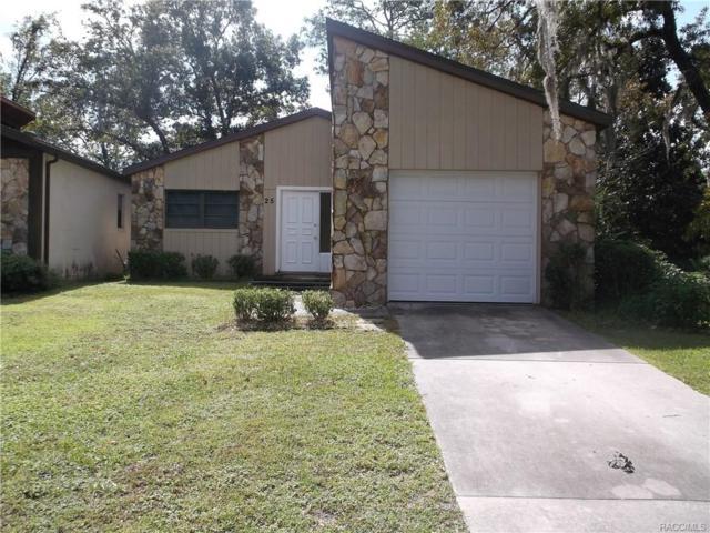25 Chinaberry Circle, Homosassa, FL 34446 (MLS #777361) :: Plantation Realty Inc.