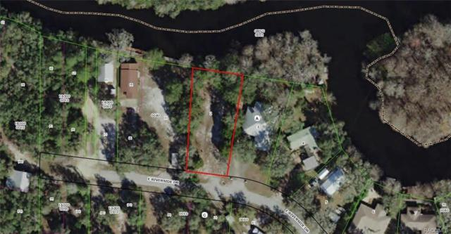 3825 E Riverside Dr, Dunnellon, FL 34434 (MLS #777378) :: Plantation Realty Inc.