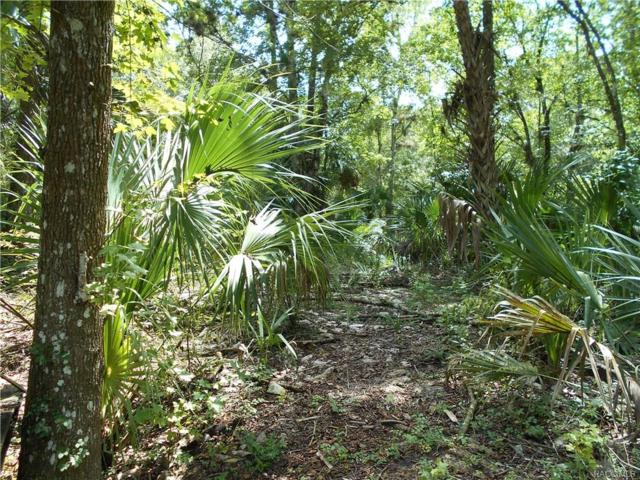 386 S Tuck Point, Inverness, FL 34450 (MLS #777398) :: Plantation Realty Inc.