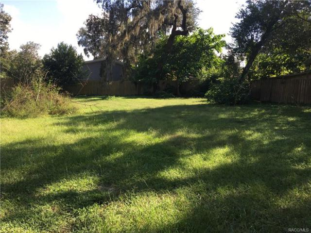 10624 E Turtle Lane, Floral City, FL 34436 (MLS #777401) :: Plantation Realty Inc.