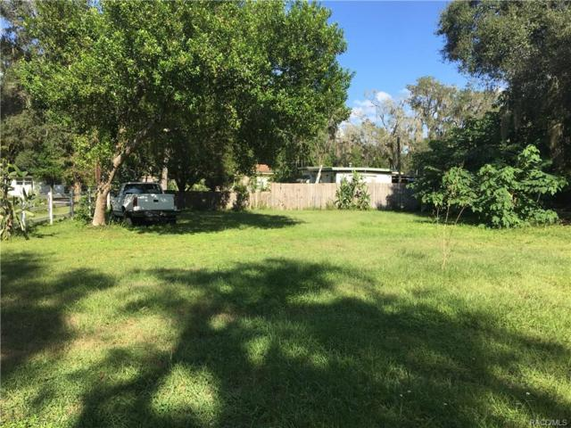 10634 E Turtle Lane, Floral City, FL 34436 (MLS #777407) :: Plantation Realty Inc.