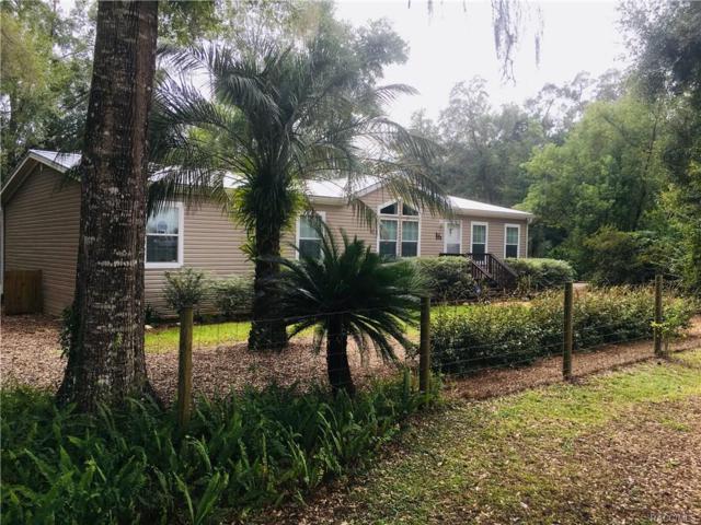 4165 N Elwyn Point, Hernando, FL 34442 (MLS #777417) :: Plantation Realty Inc.