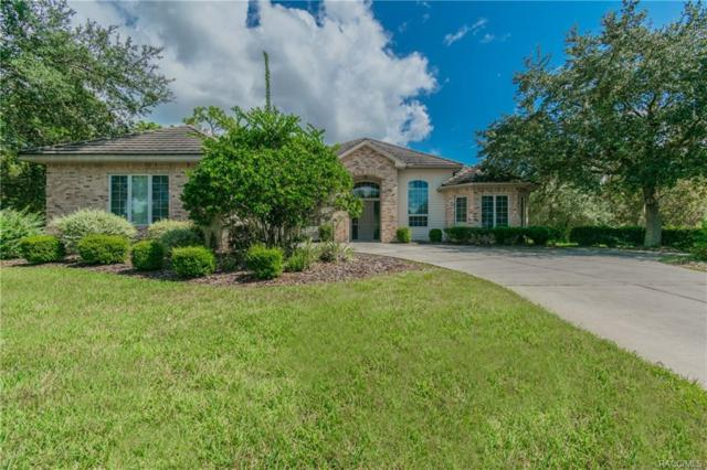 3271 N Spyglass Village Path, Lecanto, FL 34461 (MLS #777424) :: Plantation Realty Inc.