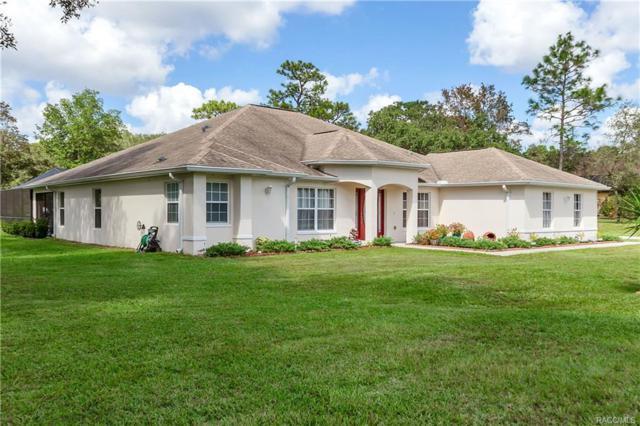 2859 W Aleuts Drive, Beverly Hills, FL 34465 (MLS #777427) :: Plantation Realty Inc.