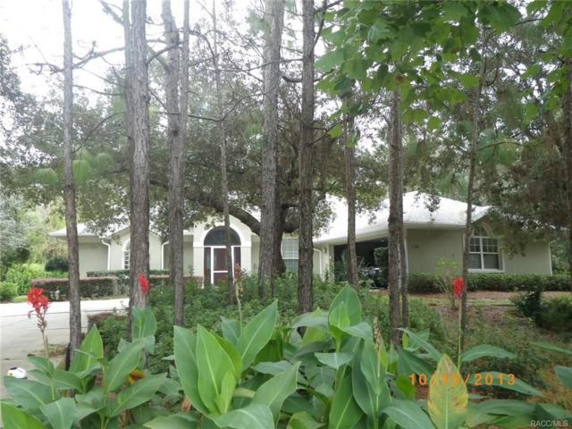 126 Corkwood Boulevard, Homosassa, FL 34446 (MLS #777525) :: Plantation Realty Inc.