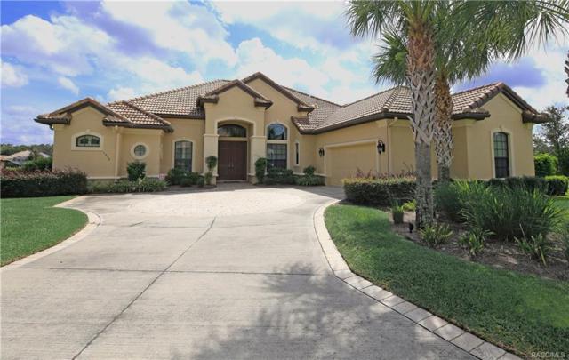 1250 W Skyview Landings Drive, Hernando, FL 34442 (MLS #777532) :: Plantation Realty Inc.
