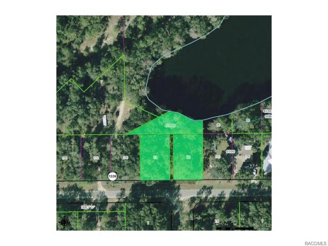 723 & 741 W Lightwood Street, Dunnellon, FL 34434 (MLS #777538) :: Plantation Realty Inc.
