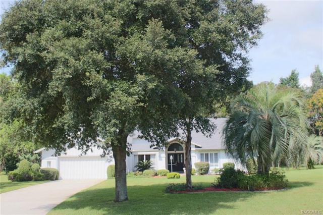 8 Chinkapin Circle, Homosassa, FL 34446 (MLS #777542) :: Plantation Realty Inc.