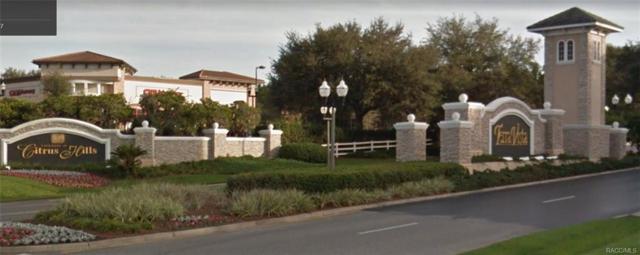 181 W Redsox Path, Hernando, FL 34442 (MLS #777546) :: Plantation Realty Inc.