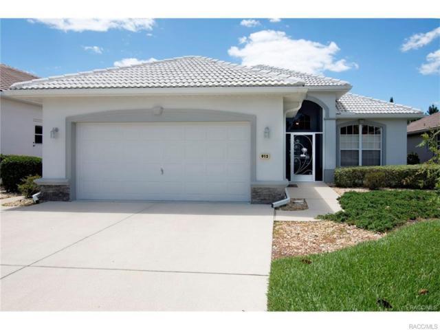 912 W Silver Meadow Loop, Hernando, FL 34442 (MLS #777547) :: Plantation Realty Inc.