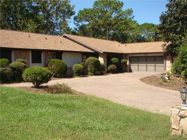 124 Douglas Street, Homosassa, FL 34446 (MLS #777563) :: Plantation Realty Inc.