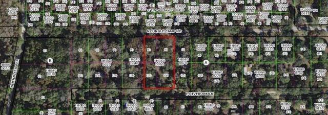 2456 N Junglecamp Road, Inverness, FL 34453 (MLS #777564) :: Plantation Realty Inc.