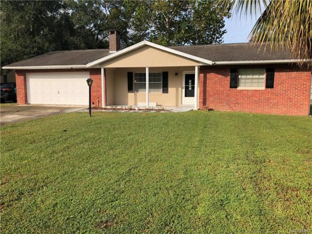 305 Hiawatha Avenue, Inverness, FL 34452 (MLS #777573) :: Plantation Realty Inc.