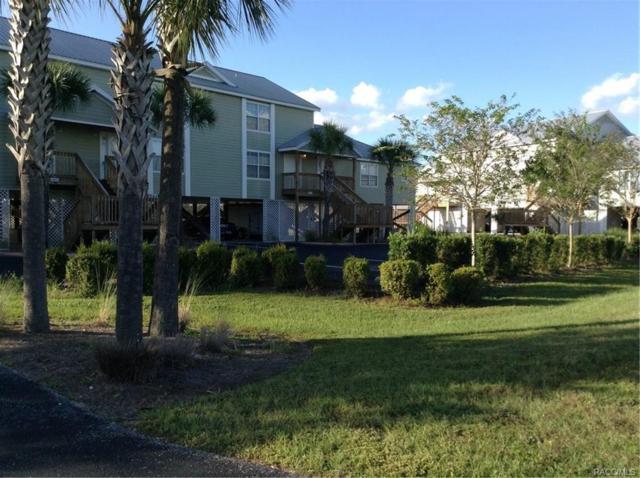2871 N Rivers Edge Boulevard, Crystal River, FL 34429 (MLS #777602) :: Plantation Realty Inc.