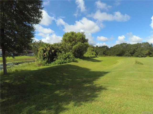 9639 E White Egret Path, Inverness, FL 34450 (MLS #777624) :: Plantation Realty Inc.