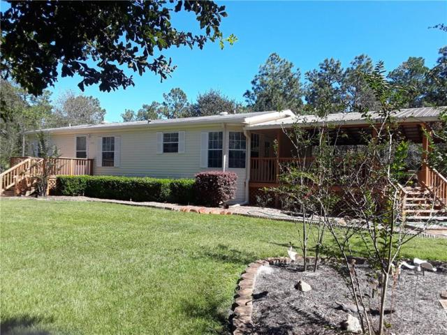 3433 S Aberdeen Terrace, Homosassa, FL 34448 (MLS #777630) :: Plantation Realty Inc.