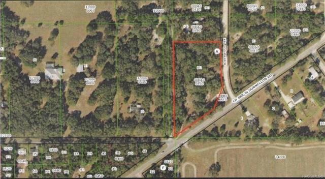 9062 N Kenwood Terrace, Crystal River, FL 34428 (MLS #777674) :: Pristine Properties