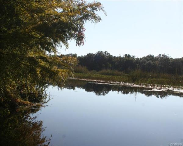 6355 N Shorewood Drive, Hernando, FL 34442 (MLS #777680) :: Plantation Realty Inc.