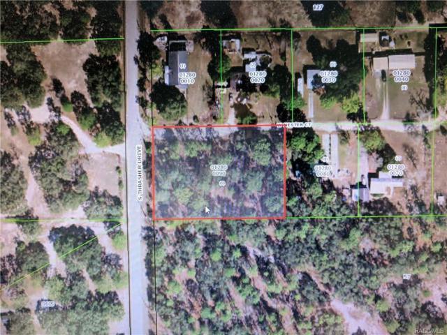 4842 W Nester Court, Homosassa, FL 34446 (MLS #777689) :: Plantation Realty Inc.
