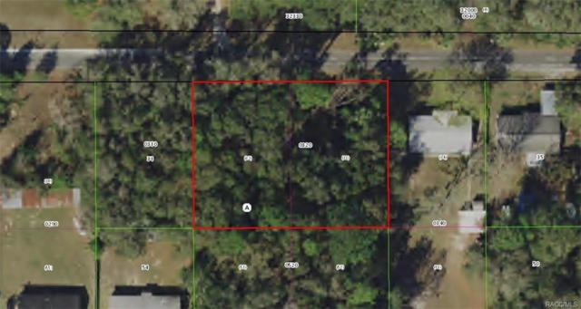 9700 W Pomegranate Street, Crystal River, FL 34428 (MLS #777704) :: Plantation Realty Inc.