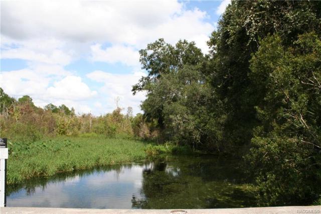 4701 E Shorewood Drive, Hernando, FL 34442 (MLS #777705) :: Plantation Realty Inc.