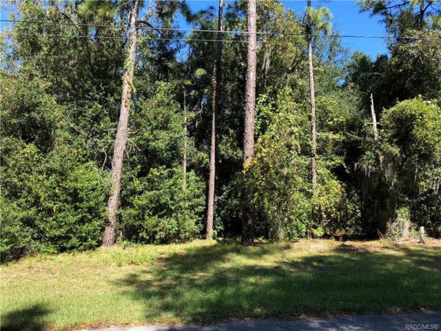 6667 E Haynes Lane, Inverness, FL 34452 (MLS #777706) :: Plantation Realty Inc.