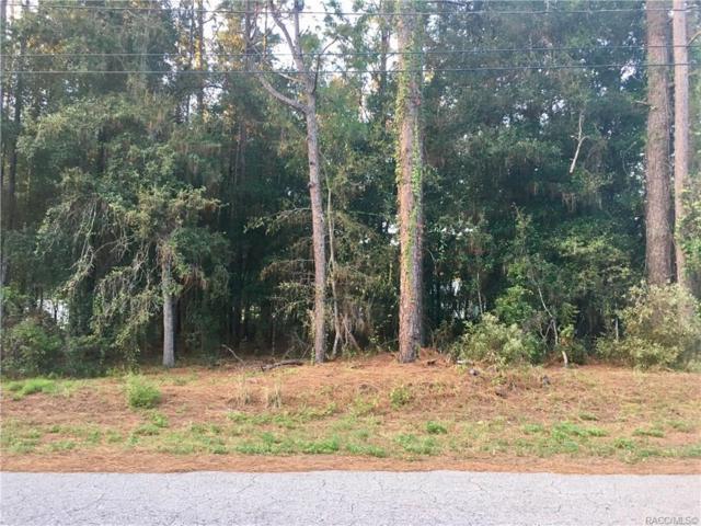 5161 E Walter Lane, Inverness, FL 34452 (MLS #777775) :: Plantation Realty Inc.