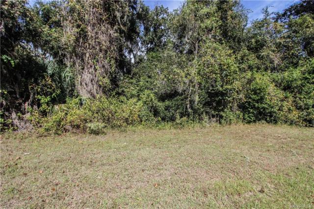488 W Cobblestone Loop, Hernando, FL 34442 (MLS #777793) :: Plantation Realty Inc.