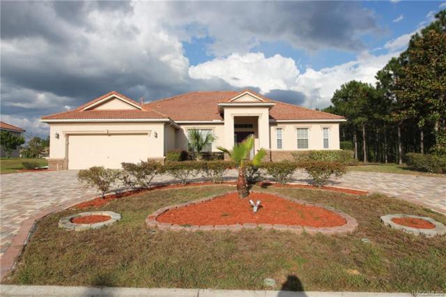1635 E Gate Dancer Circle, Inverness, FL 34453 (MLS #777814) :: Plantation Realty Inc.