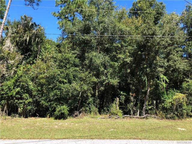 6677 E Haynes Lane, Inverness, FL 34452 (MLS #777823) :: Plantation Realty Inc.