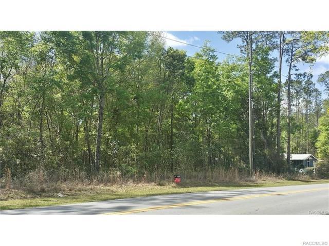 0 Rainbow Lakes Boulevard, Dunnellon, FL 34431 (MLS #777827) :: Plantation Realty Inc.