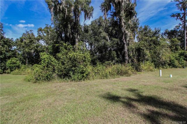482 W Cobblestone Loop, Hernando, FL 34442 (MLS #777829) :: Plantation Realty Inc.