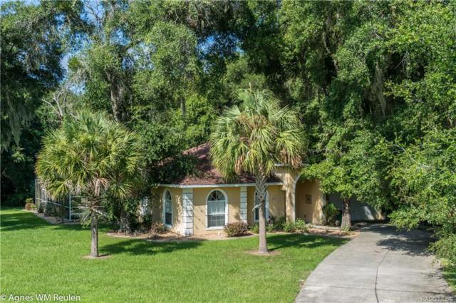 972 N Sabal Palm Way, Inverness, FL 34453 (MLS #777832) :: Plantation Realty Inc.