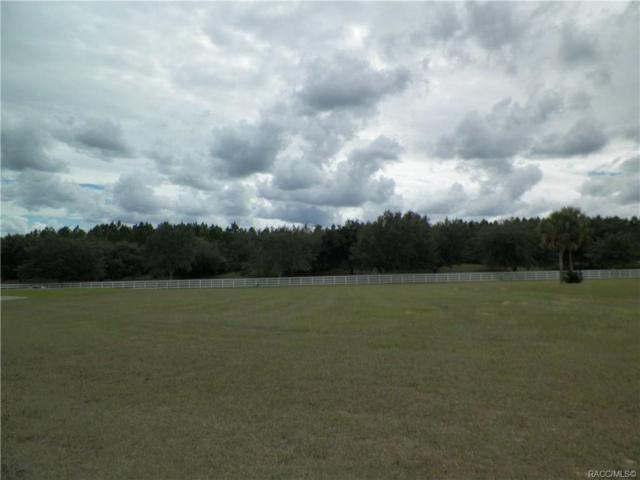 192 S Majestic Ridge Point, Inverness, FL 34453 (MLS #777836) :: Plantation Realty Inc.