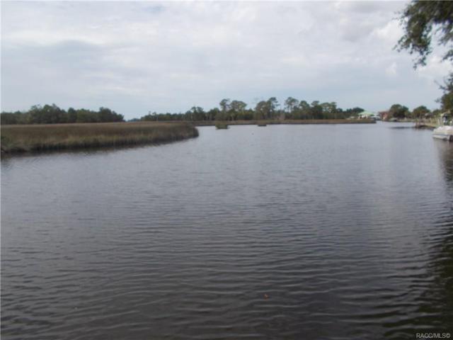 11532 W Bayshore Drive, Crystal River, FL 34429 (MLS #777854) :: Plantation Realty Inc.